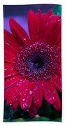 Red Gerbera Daisy Bath Towel