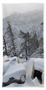 San Jacinto Winter Wilderness Portrait Bath Towel