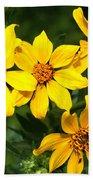 Yellow Texas Wildflowers Bath Towel