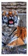 007 Siberian Tiger Bath Towel