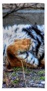 009 Siberian Tiger Wubb Me Bellwee Poweesh Bath Towel