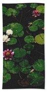 0151-lily -  Pastel Chalk 2 Sl Hand Towel