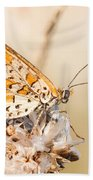 03 Lesser Spotted Fritillary Bath Towel