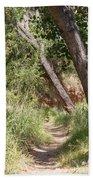 08.03.14 Palo Duro Canyon Rojo Grande Trail 8e Bath Towel