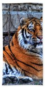 0013 Siberian Tiger Bath Towel