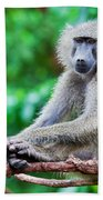 A Baboon In African Bush Bath Towel