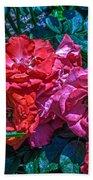A Rose Is A Rose Bath Towel