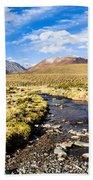 Altiplano In Bolivia Bath Towel