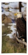 An Eagle Perched   Bath Towel