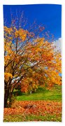 Autumn Fall Landscape Bath Towel