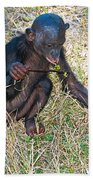 Baby Bonobo Bath Towel