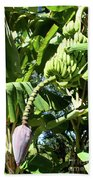 Banana Tree Bath Towel