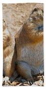 Black Tail Prairie Dogs Bath Towel
