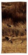 Bosque Del Apache New Mexico-sand Cranes V2 Bath Towel