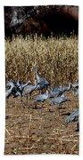 Bosque Del Apache New Mexico-sand Cranes V3 Bath Towel