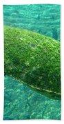 Busch Turtle  Bath Towel