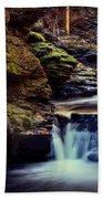 Bushkill Falls Bath Towel