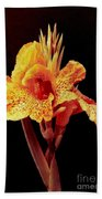 Canna Lilly In New Orleans Bath Towel