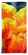 Cannas Bath Towel
