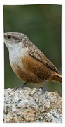 Canyon Wren Bath Towel