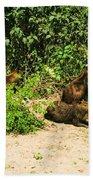 Capybara Bath Towel