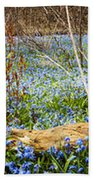 Carpet Of Blue Flowers In Spring Forest Bath Towel