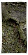 Closeup Of Bark Covered In Lichen Bath Towel