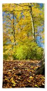 Colorful Fall Autumn Park Bath Towel