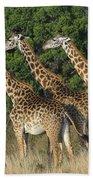 Common Giraffe Bath Towel
