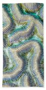Coral Maze Hand Towel