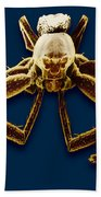 Crab Spider Hand Towel