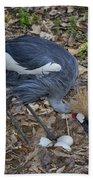 Crowned Crane And Eggs Bath Towel