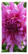 Dahlia Named Annette C Bath Towel