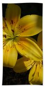 Day Lily  Bath Towel