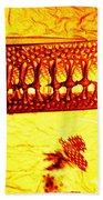 Diatom Bath Towel
