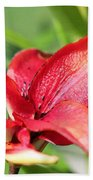 Double Asiatic Lily Named Cocktail Twins Bath Towel