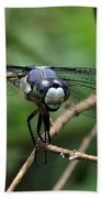 Dragonfly 71 Bath Towel