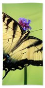 Eastern Tiger Swallowtail Butterfly Square Bath Towel