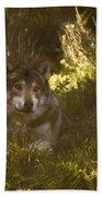 European Wolf Bath Towel