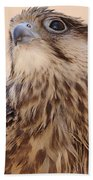 Falcon Bath Towel