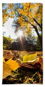 Fall Autumn Park. Falling Leaves Bath Towel