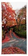 Fall Path Bath Towel