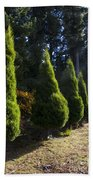 Funeral Cypress Trees Bath Towel
