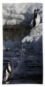 Gentoo Penguins Leaping Antarctica Bath Towel