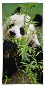 Giant Panda Ailuropoda Melanoleuca Bath Towel