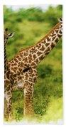 Mom Giraffe And Little Joey Bath Towel