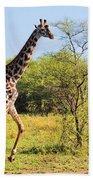 Giraffe On Savanna. Safari In Serengeti Bath Towel