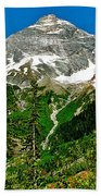 Great Glacier Trail In Glacier Np-british Columbia Bath Towel