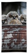 Great Horned Owl Chicks Bath Towel