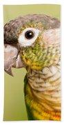 Green-cheeked Conure Pyrrhura Molinae Bath Towel